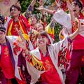 にっぽんど真ん中祭り2019 肥後真狗舞~九州がっ祭~