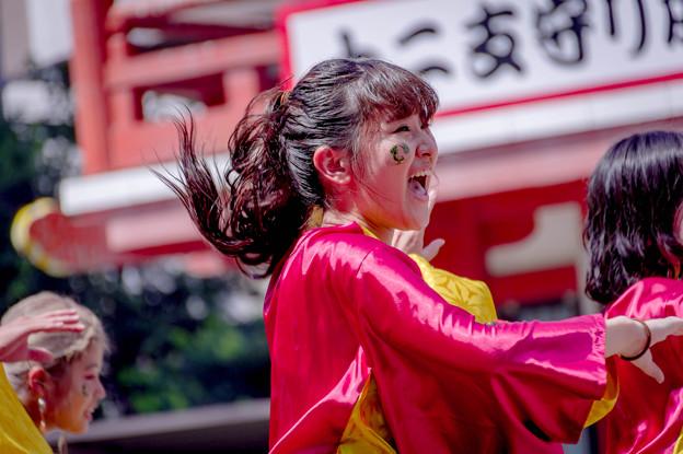 にっぽんど真ん中祭り2019 みちのくYOSAKOI THE!!駆波゛乱