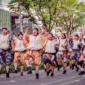 にっぽんど真ん中祭り2019 CHIよREN北天魁