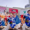 にっぽんど真ん中祭り2019 鳴海商工会猩々