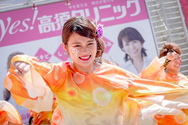 にっぽんど真ん中祭り2019 神戸学生よさこいチーム湊