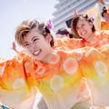 神戸アライブ2019 神戸学生よさこいチーム湊
