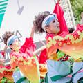 Photos: にっぽんど真ん中祭り2019 SPICE!