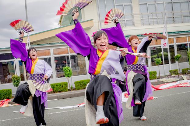 御食国若狭おばまYOSAKOI祭2019 Yosakoi Team 一新