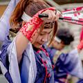 Photos: 御食国若狭おばまYOSAKOI祭2019 渡衆七番隊扇傘