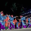 よさこい全国大会2019 和歌山MOVE