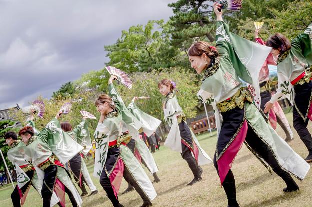 Photos: YOSAKOI高松祭り2019 謳歌-OHCA-