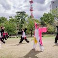 YOSAKOI高松祭り2019 夜舞華志連