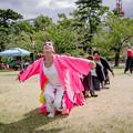Photos: YOSAKOI高松祭り2019 夜舞華志連