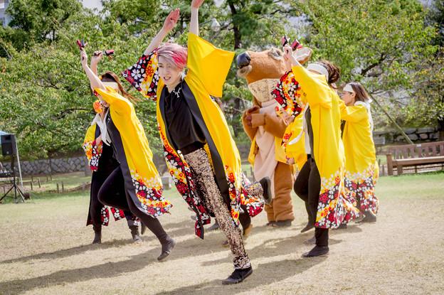 Photos: YOSAKOI高松祭り2019 TAICHI with 白虎連