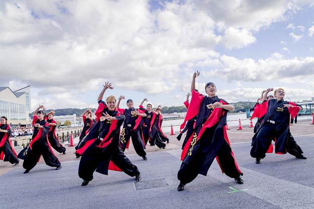 Photos: YOSAKOIさせぼ祭り2019 Team Uto 侍
