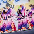 桃食べな祭2019 河内連