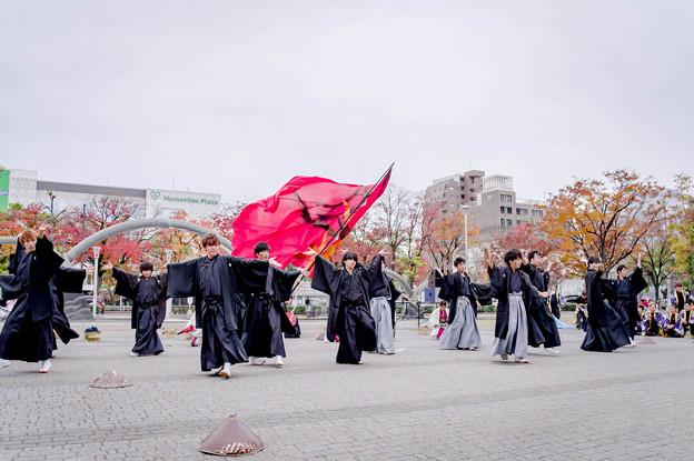 四日市よさこい2019 倭音-yamato-