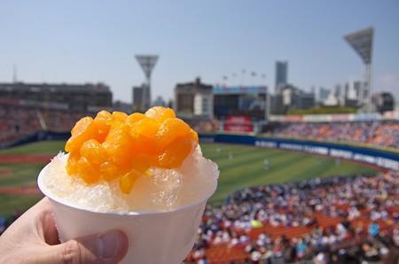 横浜スタジアムといえばやっぱりみかん氷