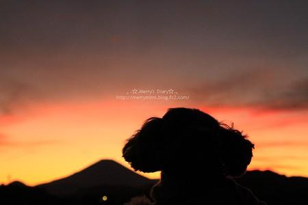 富士山と愛犬