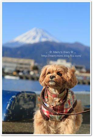 富士山とパチリ☆
