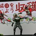 Photos: 戦うイバライガー