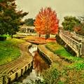 千波湖公園