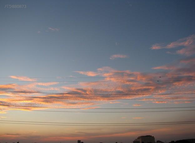 夕焼け空にウロコ雲が泳いでいきます