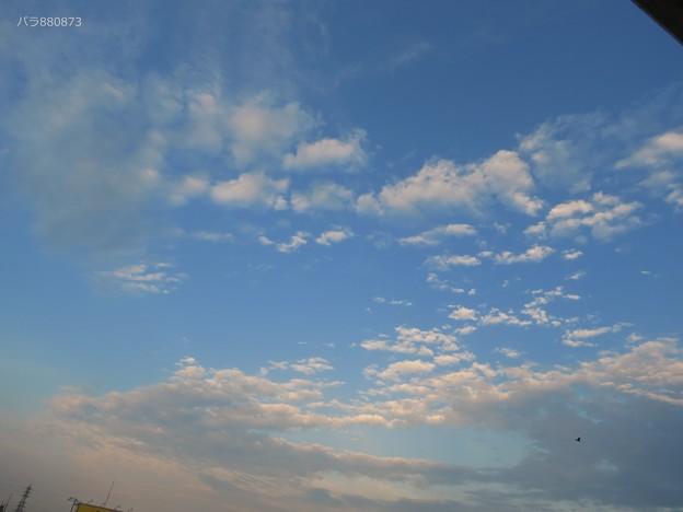 ピンク色の雲♪