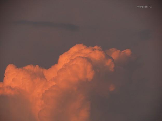 ウルトラピンク東の雲