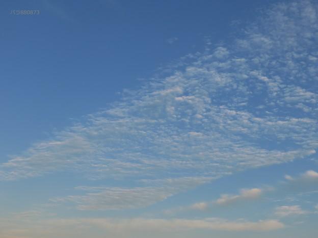 東方向へ向かうウロコ雲の帯
