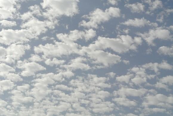 やっと出たウロコ雲