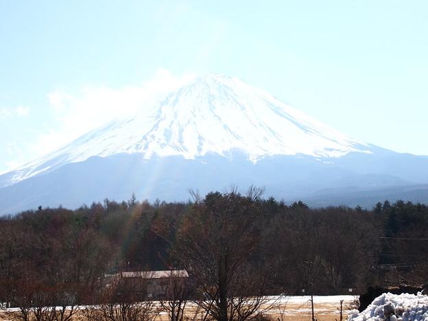 鳴沢村から・・・