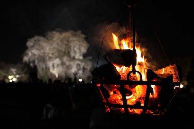 祇園の夜桜