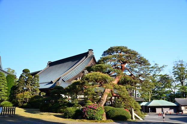 久遠寺 法喜堂