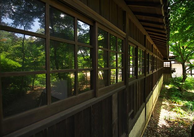 写真: 本土寺その1