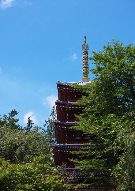 本土寺その3