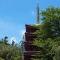 Photos: 本土寺その3