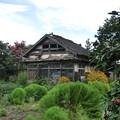 廃墟。でも残しておきたい昭和の遺産。。。