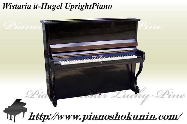 2012.08.02 Wistaria u-Hugel