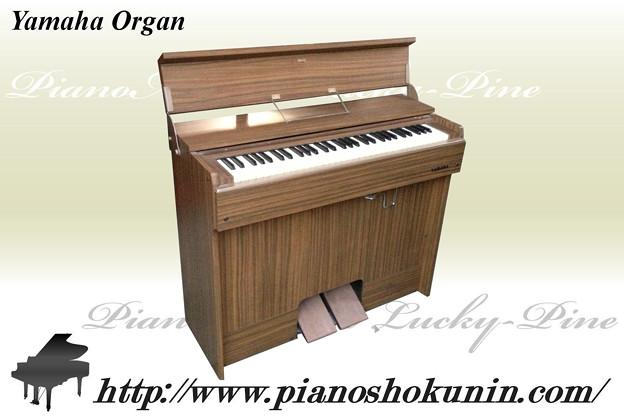 2012.12.18 Yamaha Organ
