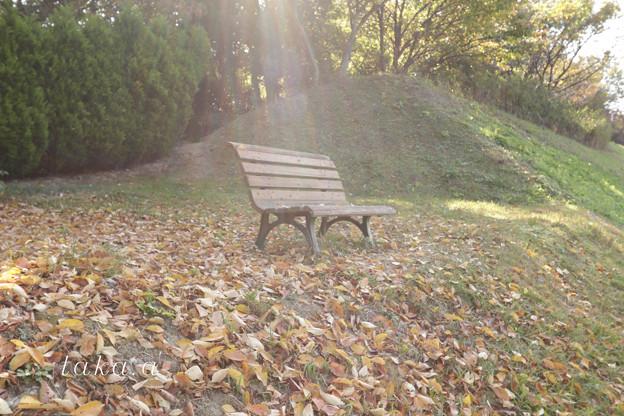 天使のベンチ
