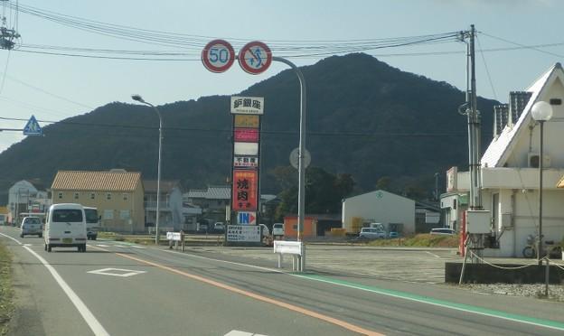 写真: 灘黒岩水仙郷6