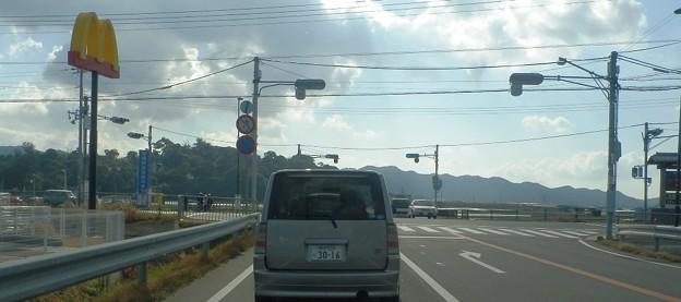 写真: 灘黒岩水仙郷10