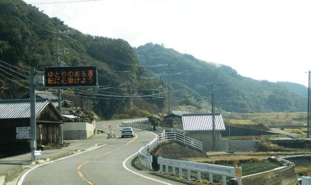 写真: 灘黒岩水仙郷13