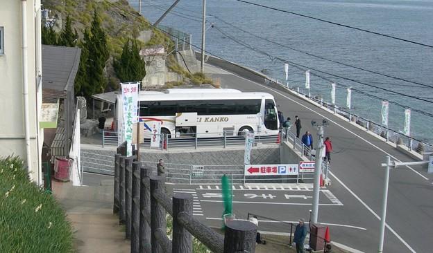 写真: 灘黒岩水仙郷35