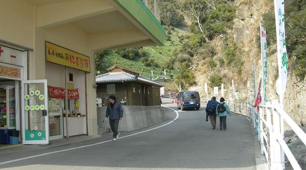 写真: 灘黒岩水仙郷36