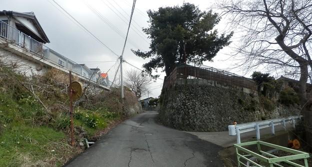 写真: おれんじ荘11