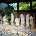 写真: 塩谷十三仏種子板碑群