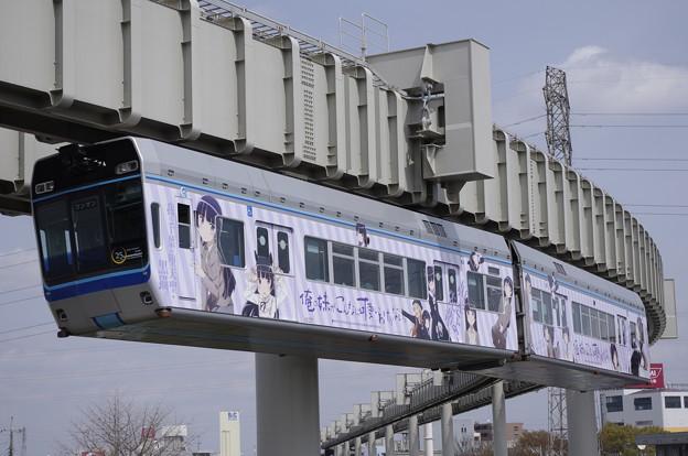 フォト蔵千葉都市モノレール 1000形アルバム: 鉄道アルバム (891)写真データSKYRAILWAYさんの友達 (61)フォト蔵ツイート