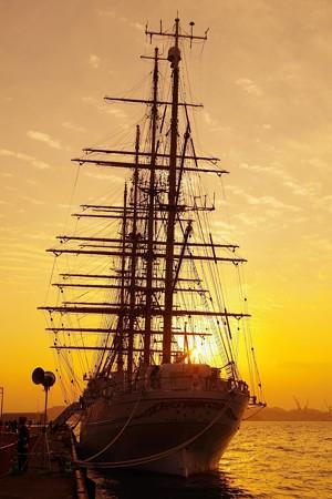 夕日にあたって。。綺麗なシルエット・・