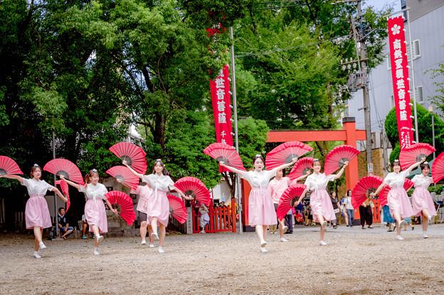 にっぽんど真ん中祭り2018 東西大学校トルゴレ - 写真共有サイト ...